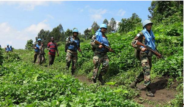 Enjeux et perspectives de l'exploitation des ressources naturelles en République Démocratique du Congo